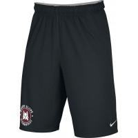 Bonny Slope 22: Adult-Size - Nike Team Fly Athletic Shorts - Black